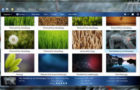 10 Beautiful Plant / Nature Windows 7 Themes