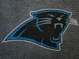 Carolina Panthers Wallpaper Themepack