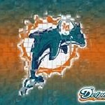 Dolphins wallpaper themes thumb 150x150 jpg