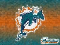 The Fins – Miami Dolphins Theme For Your PC With Phin Fever Wallpapers