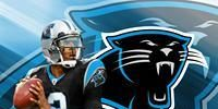 Cardiac Cats: Get The Carolina Panthers HD Backgrounds (Included In This Theme)