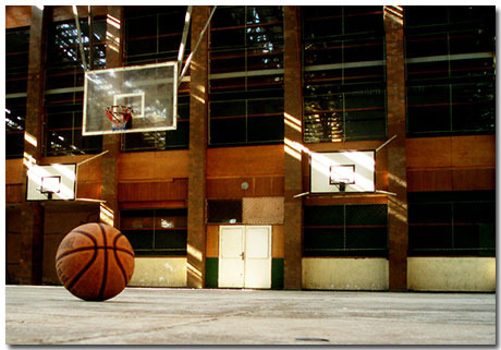 Basketball Theme With 10 Backgrounds