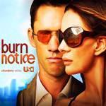 Top TV: Burn Notice Windows 7 Themepack