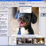 Better Resolution: Photo Editing Programs For Increasing An Image's Resolution