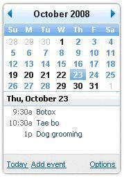 Google Calendar Gadget for Windows 7