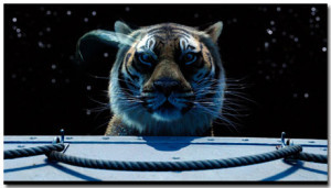 Life Of Pi Theme With 10 Backgrounds