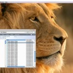 mac os x lion windows 7 theme jpg
