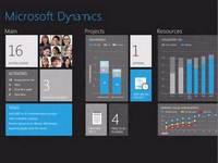 Biz: Microsoft Shows Off Windows 8 Business App Concepts for Metro UI