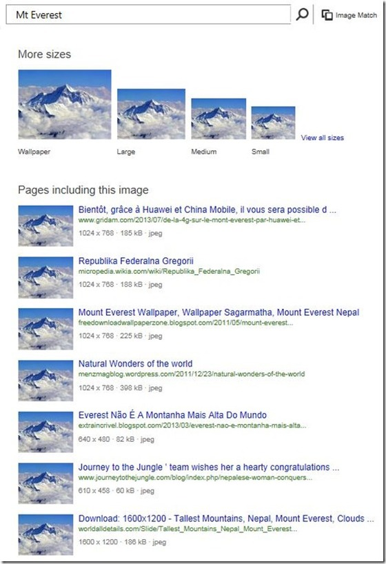 Microsoft Gives Users More Image Search Sizes In Bing Results Via Updates