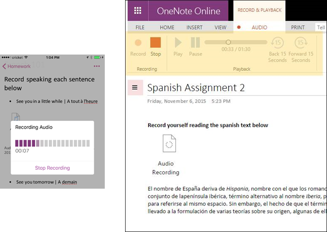 OneNote Gets Audio, Video and File Insertion Tools
