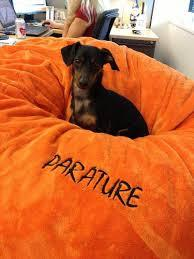 Parature Proves CRM And Enterprise Aren't For The Dogs