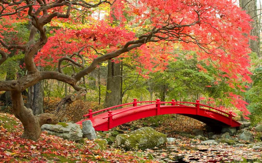 Bridges In Autumn Brings Fall To Windows 10 Users