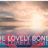 The Lovely Bones 1 100x100 Jpg