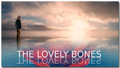 The Lovely Bones Theme With 10 Backgrounds