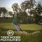 Golf Themes: Tiger Woods PGA Tour 13 (2012) Wallpapers And Screens