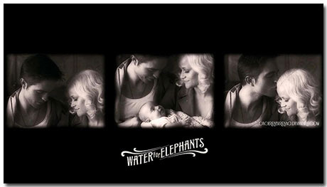 Water For Elephants Theme With 10 Backgrounds