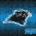4-Carolina Panthers-wallpaper