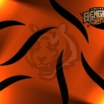 3-Cincinnati Bengals-wallpaper
