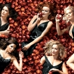 desperate housewives-wallpaper5