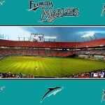 3-Florida Marlins -wallpaper