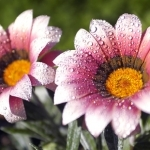 10-beautiful-landscapes-wallpaper